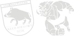 """Stowarzyszenie Klub Biegowy """"Dzik"""""""